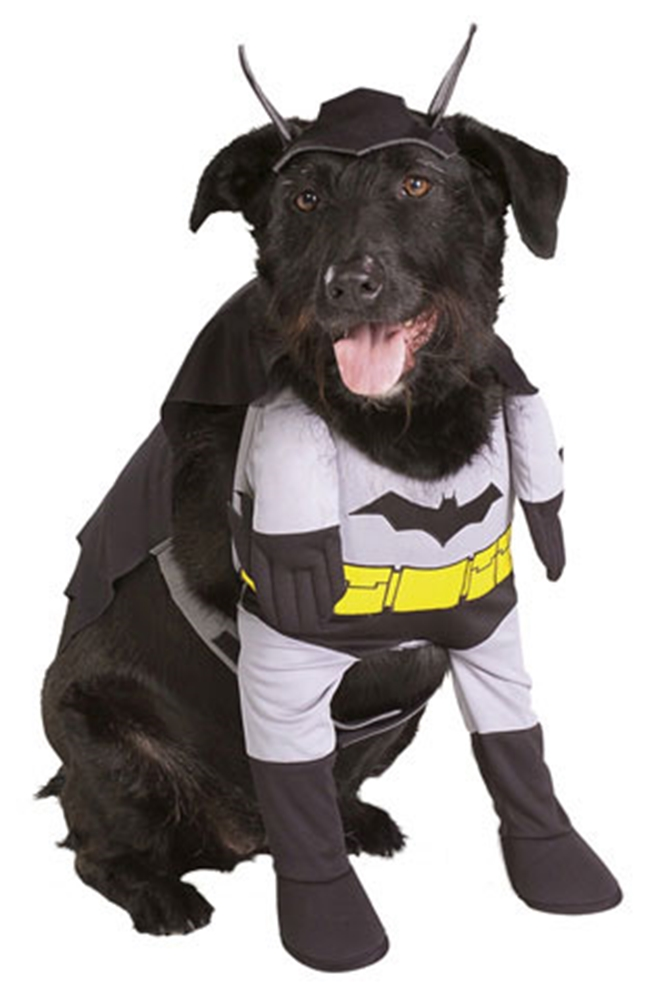 Justice League Batman Pet Costume